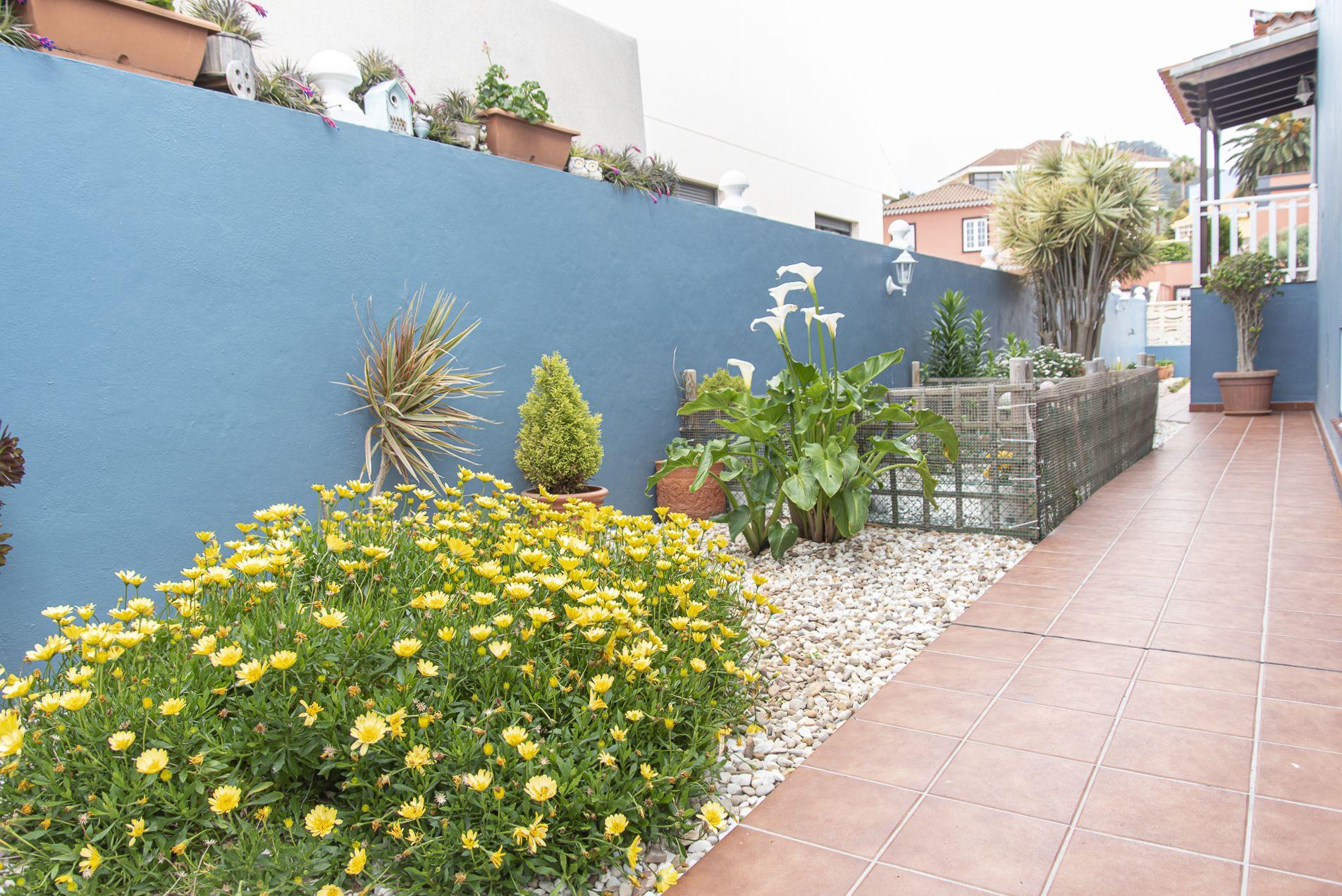 La Casa Azul - Tegueste. Jardín 1